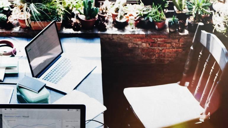 Les plantes, un moyen économique d'améliorer les conditions de travail