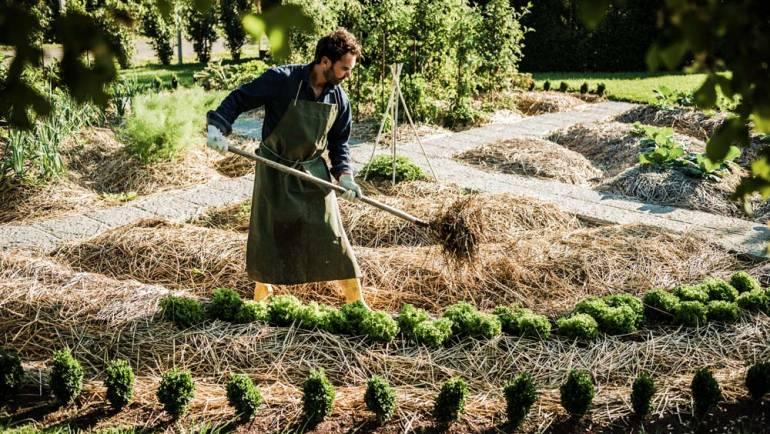 La permaculture et ses nombreux avantages pour tous