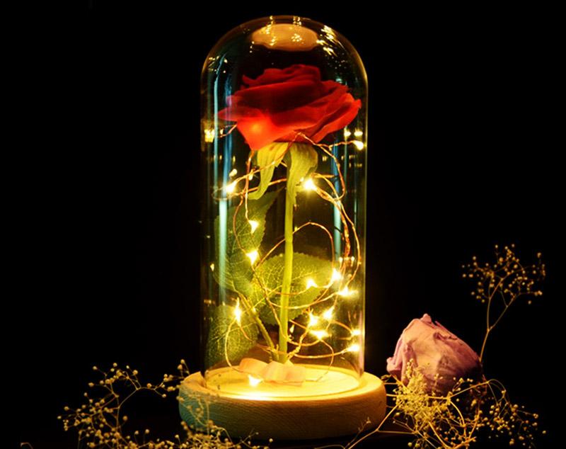 Rose Eternelle Sous Cloche Le Cadeau Parfait Pour Symboliser Votre
