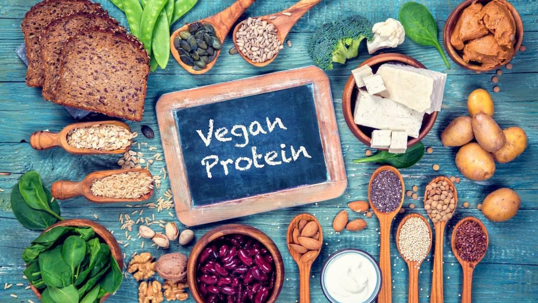 Meilleure protéine végétale en poudre, on dresse le comparatif !