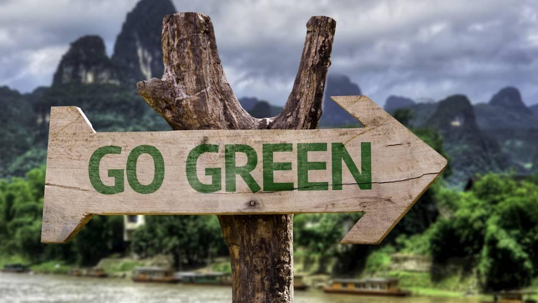 Les bureaux suivent la mode eco-friendly et se mettent au vert