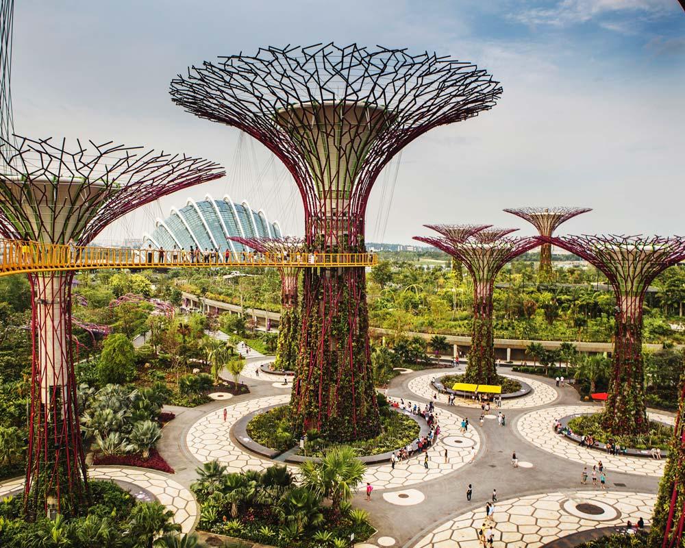 Les effets de la vue de végétation sur les indicateurs de stress et de santé