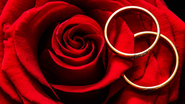 Rose éternelle sous cloche, LE cadeau parfait pour symboliser votre amour