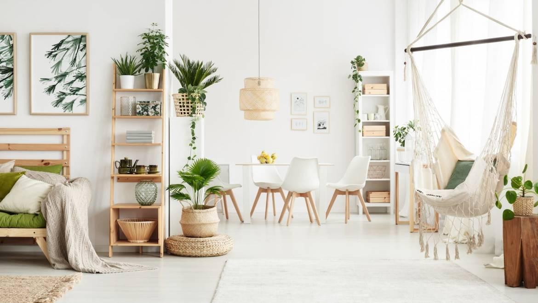 Comment mettre en valeur ses plantes d'intérieur ?